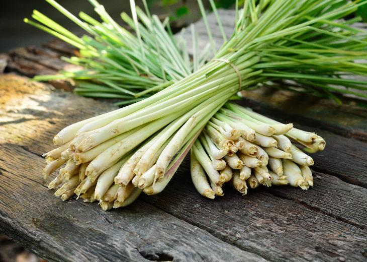 thumbnail of Lemongrass Has Some Surprising Health Benefits