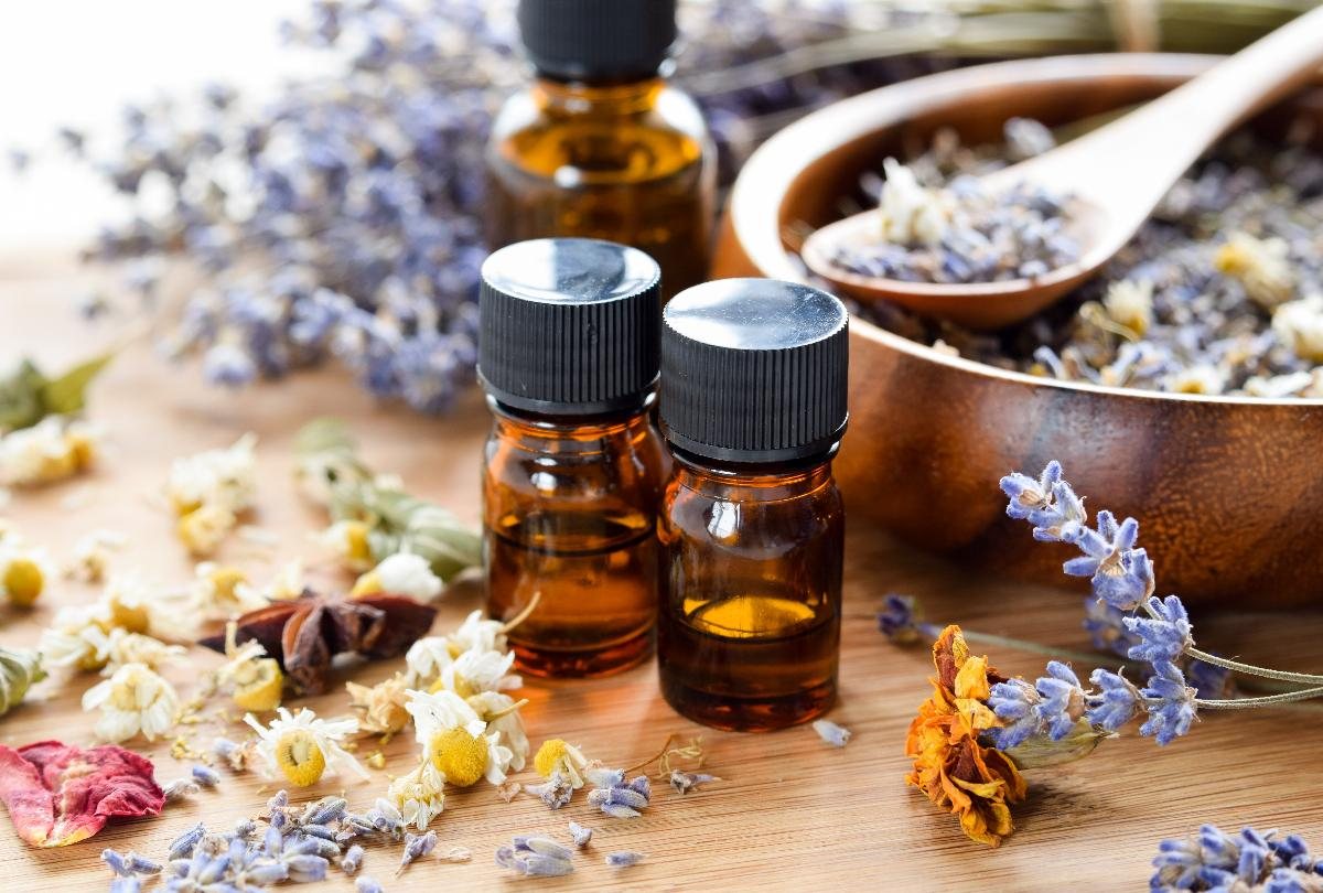 banner of Explore the Benefits of the Different Oils Used in Aromatherapy