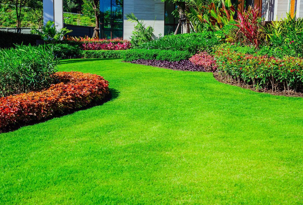 banner of Turn a Garden into a Utopia