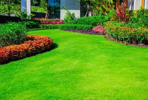 square of Turn a Garden into a Utopia