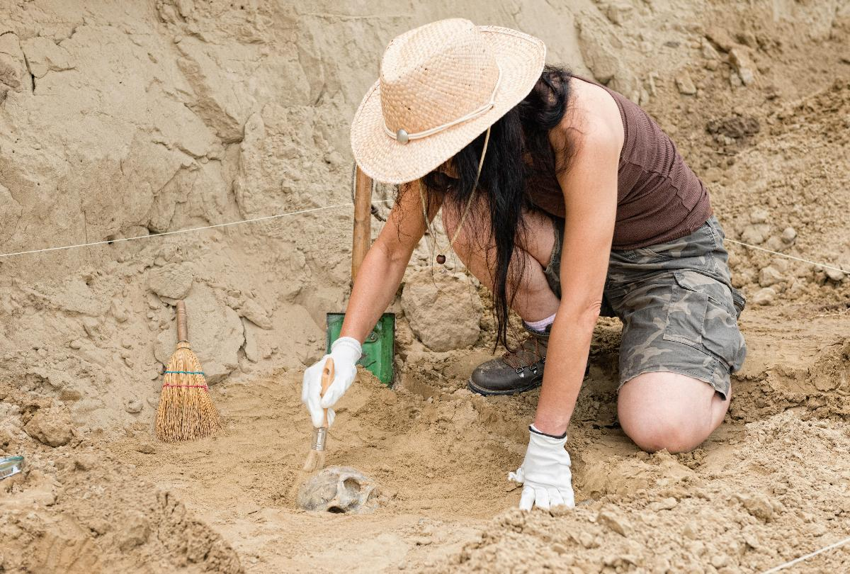 banner of Whether a Novice or Expert, You Can Always Learn More About Archaeology (lifestylealive)