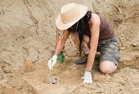 square of Whether a Novice or Expert, You Can Always Learn More About Archaeology (lifestylealive)