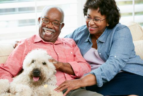 square of The Best Senior Focused Health Aids
